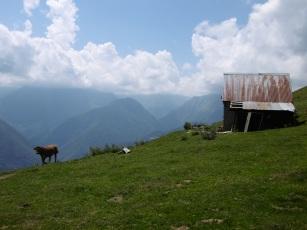 Cabane de l'Araing